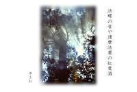 秋惜しむその⑥ - ゆきおのフォト俳句