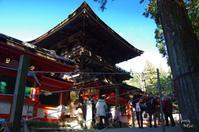 天理市石上神宮11月に入ってから撮影していません3 - ぶらり記録 2:奈良・大阪・・・