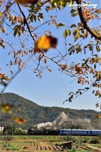 北びわこの小さい秋 - 夕暮れと蒸気をおいかけて・・・