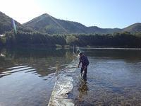 川と山で遊びました。 - blog版 がおろ亭