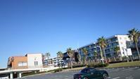 Daily notes: 漁港の直売所でカマス & 茅ヶ崎のお蕎麦屋がマーベラス - al mare 気ままにmamma (たまにnonna)
