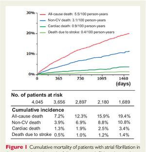 日本の心房細動患者の死因の半分以上は非心臓死。脳卒中は6.5%:伏見AFレジストリより - 心房細動な日々