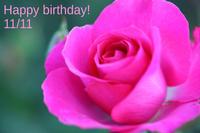 Happy birthday! - 写真の記憶