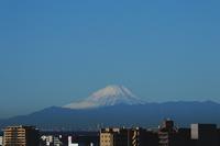 初冬富士 - 日々の風景
