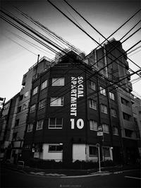 十番 - day's photo.