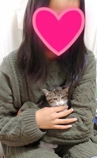 嬉しいお知らせ❤ - 青梅ニャンだふる☆Life
