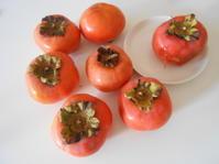 故郷の柿とカキフライ定食。 - のび丸亭の「奥様ごはんですよ」日本ワインと日々の料理