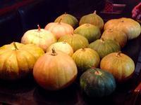 京都 韓国料理 桃李園と旬の 朝鮮かぼちゃ - MOTTAINAIクラフトあまた 京都たより