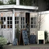 お気に入りの場所巡り!「図書館~インテリア雑貨ショップへ・・・」編 - ドライフラワーギャラリー⁂ふくことカフェ