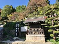 秋の「山寺」。 - Welcome to Koro's Garden!