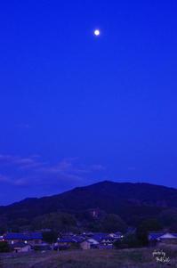 明日香村橘11月に入ってから撮影していません5 - ぶらり記録 2:奈良・大阪・・・