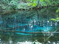 2019.09.26 神の子池 - ジムニーとピカソ(カプチーノ、A4とスカルペル)で旅に出よう