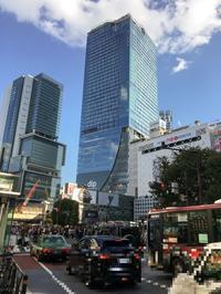 CARVAAN TOKYO でランチ - どんぐりの秘密のガーデン