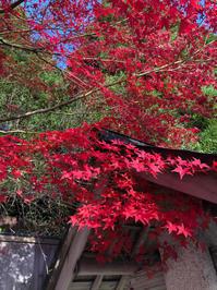 世界まる見え!テレビ特捜部 - minako's  official blog 中野美奈子オフィシャルブログ