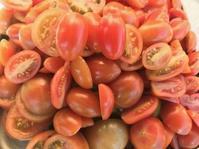 ドライトマト作り - 島暮らしのケセラセラ