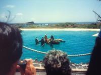 1987年6月ハワイ - いつか海外ロングステイ