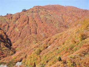 魚沼市 紅葉の奥只見湖     Okutadami Dam in Uonuma, Niigata - やっぱり自然が好き