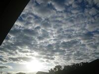 今朝の空もスペクタクル 11/15 - つくしんぼ日記 ~徒然編~