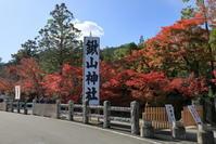 亀岡鍬山神社(くわやまじんじゃ)の紅葉 - ぴんぼけふぉとぶろぐ2