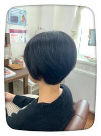 頭皮の乾燥には - ☆お肌に優しい 低刺激の白髪染め 大人のためのおしゃれサロン 岩見沢美容室ココノネ太田汐美の パーマネント日記
