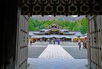 弥彦神社 - くろちゃんの写真