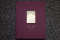 Masao Yamamoto 山本昌男 「Small Things in Silence」 - atsushisaito.blog