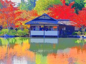黄葉紅葉の昭和記念公園(11月17日) -