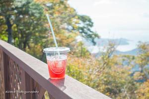 小豆島*紅葉サイダー。 - Yuruyuru Photograph