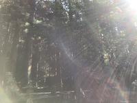 リーディング体験会 春の神神社に続いて〜光あふれる〜秋の遠足❤️龍神ツアーでした。 - あん子のスピリチャル日記