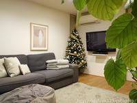 クリスマスツリーとリースを出しました - シンプルで心地いい暮らし