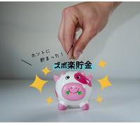 *総額○○円!ホントに貯まったズボ楽貯金* - ~暮らしのヒラメキ~