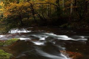 秋の急流 -