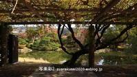 岡崎公園に行く4 - 写楽彩2