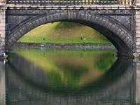 皇居二重橋ヨシガモ?♪・・・この日大嘗祭とバッティングで東御苑に入れず - 『私のデジタル写真眼』