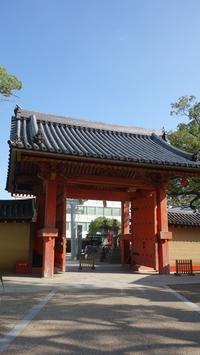 西宮ミニ同窓会②西宮神社へ - ハチドリのブラジル・サンパウロ(時々日本)日記