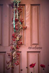 クリスマス*ドア飾り&チョコレートコスモス♪ - MIRU'S PHOTO