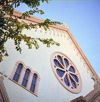 Salesians - パトローネの中