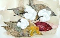 綿花と落ち葉 - ryuuの手習い