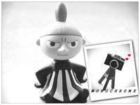MONOCHROME ! - LAGOMな……PHOTO   LIFE !