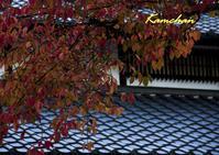 紅葉はじまりの京都 - カンちゃんの写真いろいろ