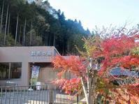 秋の檜原村遠征。──「数馬の湯」 - Welcome to Koro's Garden!