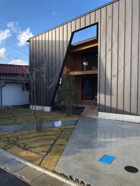 とらの間の家 - 三楽 3LUCK 造園設計・施工・管理 樹木樹勢診断・治療
