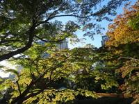 秋の日比谷公園 - Iris Accessories Blog