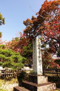 嵯峨山 大覚寺で紅葉を見た(2019) - ほんじつのおすすめ