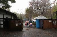 ■収穫祭19.11.23 - 舞岡公園の自然2