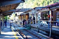 アプト式列車で奥大井湖上駅へ~紅葉2019その①~ - photo blog
