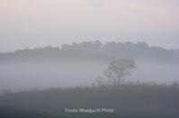 霧朝の淡いろ - ekkoの --- four seasons --- 北海道