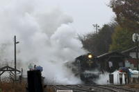 水蒸気を纏う機関車- 2019年晩秋・真岡鉄道 - - ねこの撮った汽車