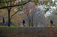 今日の舎人公園まずは紅葉を走れ - meの写真はザンス