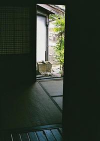 明暗 - Ippo Ippo